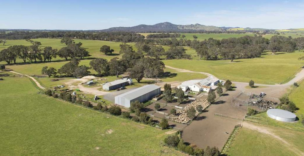 Aerial shearing shed and yards 05 1