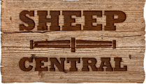 Sheep Central Logo