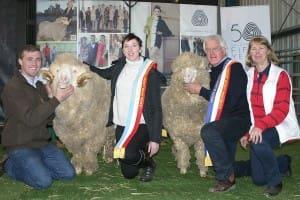 Ewes - Merino - Supreme - Sheepvention 2014