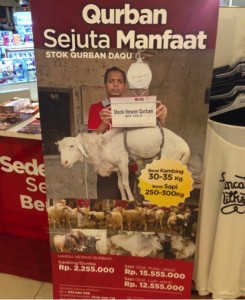 Advertising in Jakarta for sheep, goats and cattle for the Korban festival (2014).