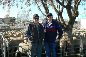 Austin and Harry Brown from Boika, with their parents Ian and Belinda Brown's Merino lambs that sold for $136 at Ouyen.