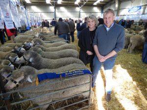 Moorundie Poll Merino Stud principals Bernadette and Geoff Davidson with their winning pen of 5 sale rams at Sheepvention.